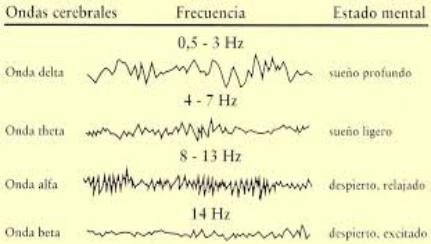 Tablas con distintos tipos de ondas cerebral