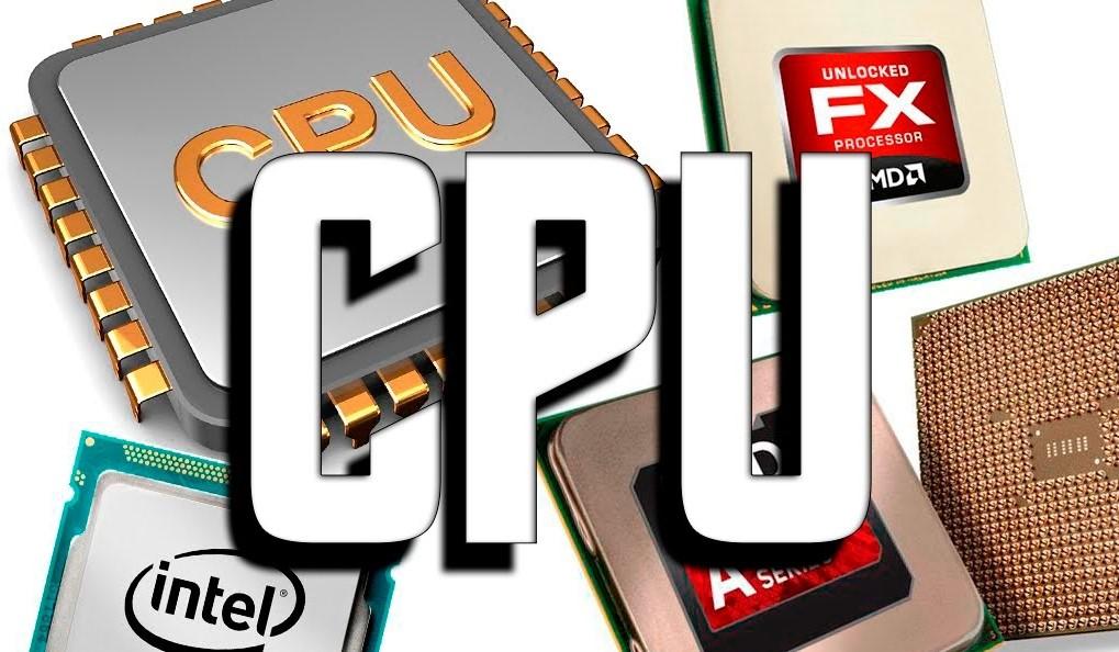 Varios tipos de procesador