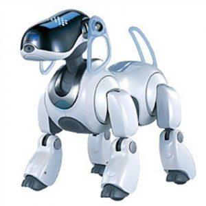 principios y fundamentos de la robótica